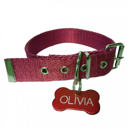 Collar de Polipropileno 12mm x 30cm + Chapita Identificable